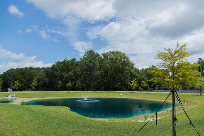 A pond and fountain at Wilmington Treatment Center